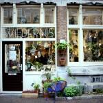 Wildernis_Amsterdam