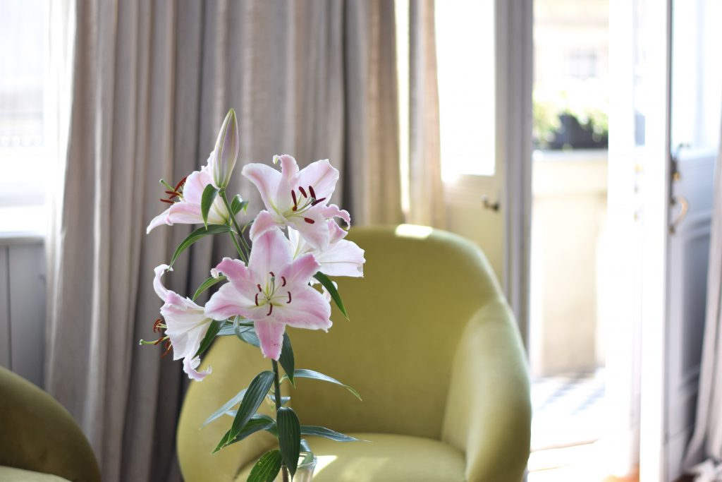 autor-rooms-warschau-interieur-hotel-bloem
