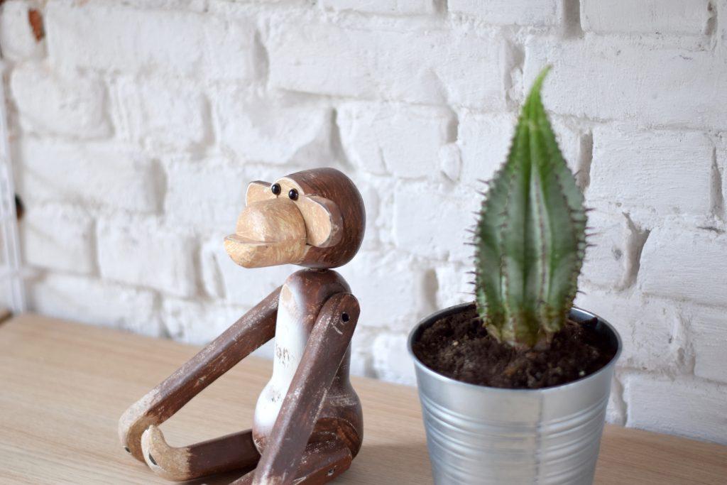 Jasmien Witvrouwen interieur aapje