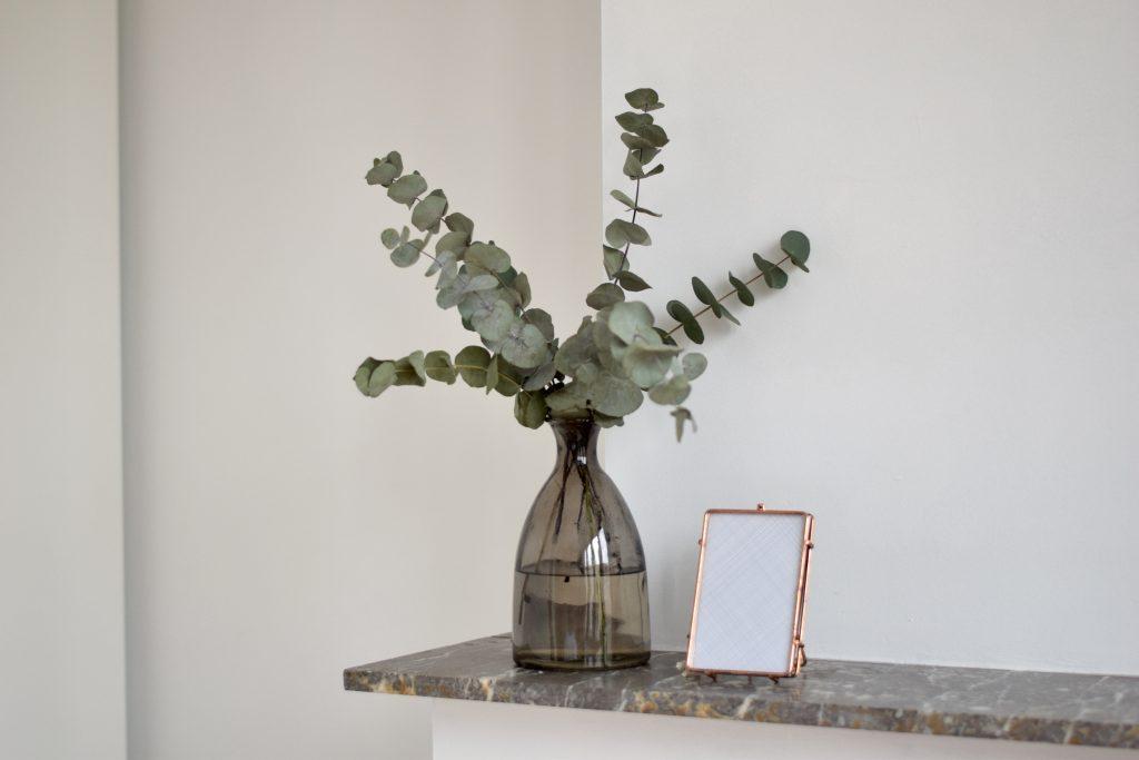 Jasmien Witvrouwen interieur eucalyptus