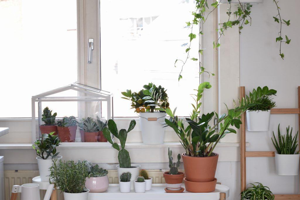 ikea indoor garden raam