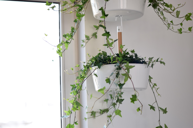 Ikea Keuken Haken Informatie Over De Keuken