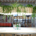 planten-boven-tafel