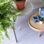 decoratie-plant